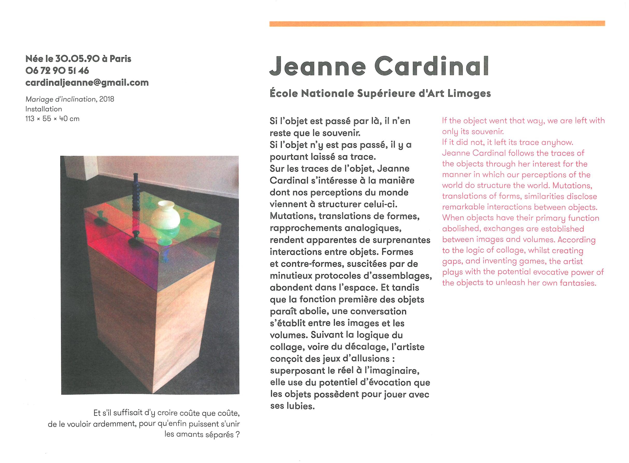 Catalogue Biennale de MULHOUSE